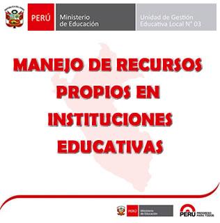 MANEJO DE RECURSOS PROPIOS EN IE
